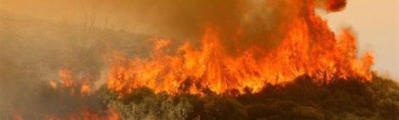 Σέιχ Σου: Πυρκαγιά σημειώθηκε πριν λίγη ώρα